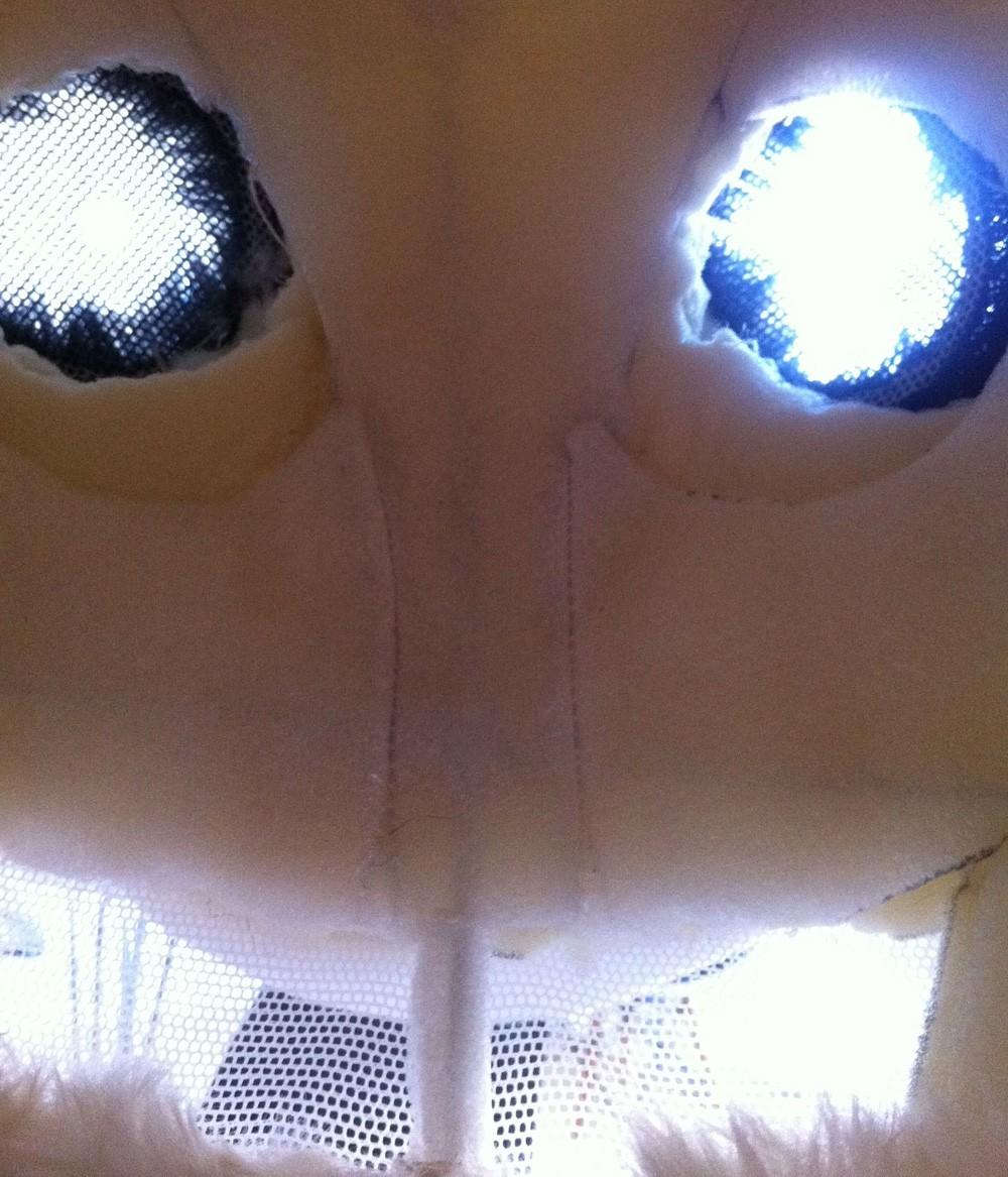 Udsynet inde i pandahovedet. Gennem øjnene kan man se lige frem og gennem munden lige ned. Foto: Jonas Juhler Hansen.